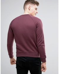 Armani Jeans Red Emboss Logo Sweat Crewneck Regular Fit In Bordeaux for men