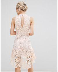 True Decadence Pink Allover High Neck Premium Lace Mini Dress
