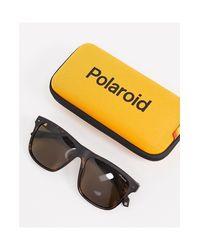 Polariod - Occhiali da sole squadrati tartarugati di Polaroid in Multicolor