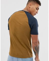 Zemlak - T-shirt slim color cuoio con maniche raglan a contrasto di Farah in Multicolor da Uomo