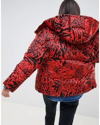 ASOS Leopard Collared Padded Jacket