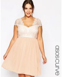 ASOS | Natural Curve Scalloped Lace Skater Dress | Lyst