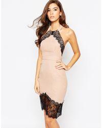 Elise Ryan Black Bodycon Dress With Asymmetric Lace Hem