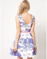 Oasis Multicolor Botanical Placement Skater Dress