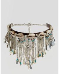 ASOS - Metallic Shell Bead Choker Necklace - Lyst