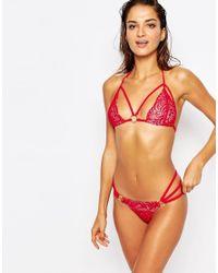 Ann Summers Mai Lace Triangle Bikini Bottoms - Red