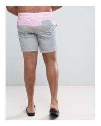 ASOS Gray Asos Plus Swim Shorts for men