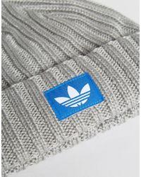 Adidas Originals Gray Beanie In Grey Ay9309 for men