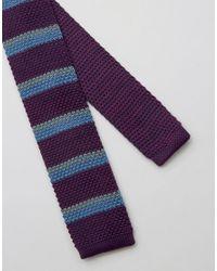 Original Penguin Purple Knitted Striped Tie for men