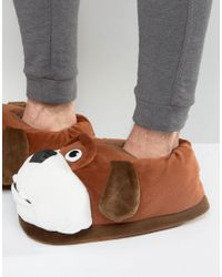 New Look Novelty Bulldog Slippers In Brown