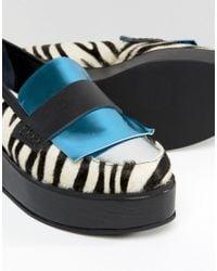 House of Holland - Blue Zebra Print Flatform Shoes - Lyst