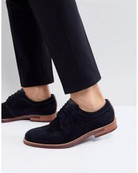Ted Baker Blue Delanis Suede Brogue Shoes In Navy for men