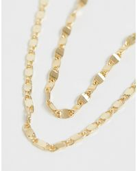 ASOS Metallic Asos Design Curve Multirow Necklace In Mixed Link Chain In Gold