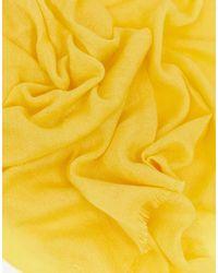 Bufanda lisa en amarillo brillante New Look de color Yellow