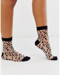 ASOS Black Sheer Dotty Sock
