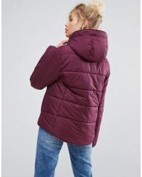 Converse Purple Padded Jacket In Burgundy