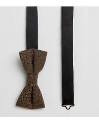 Heart & Dagger Brown Tweed Bow Tie for men