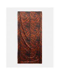 Широкий Платок С Анималистичным Принтом ASOS, цвет: Natural