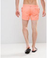 Pull&Bear Swim Shorts In Orange for men