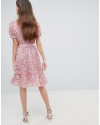 French Connection - Pink Lace Applique Dress With Mesh Panelling - Lyst