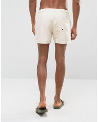 ASOS Natural Swim Shorts In Stone Short Length for men