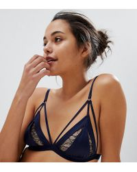 Wolf & Whistle Blue Navy Lace Bra