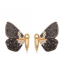 Astley Clarke Multicolor Magpie Moth Stud Earrings