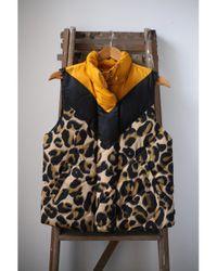 Scotch & Soda Multicolor Leopard Print Chevron Gilet