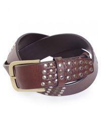 Elliot Rhodes Brown Leather Studded Belt for men