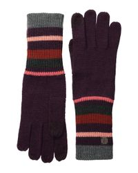 Smartwool | Purple Nokoni Glove | Lyst