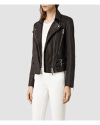 AllSaints - Brown Laced Hawks Biker Jacket - Lyst