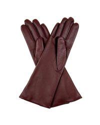 Hobbs - Red Debutante Glove - Lyst