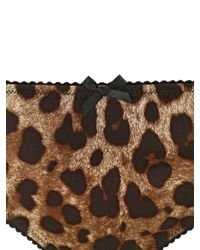Dolce & Gabbana Multicolor Leopard Print Stretch Silk Satin Brief