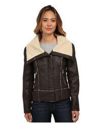 Sam Edelman   Brown Pu W/ Oversize Sherpa Collar Moto Jacket   Lyst