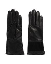 HUGO | Black Leather Gloves With Cowhide Trim: 'dh 69' | Lyst