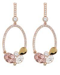 Swarovski | Pink Branch Rose Goldtone And Crystal Drop Earrings | Lyst