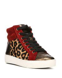 Sam Edelman Red 'britt' Leopard Calf Hair Leather Combo Sneakers