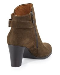 Alberto Fermani - Black Ada Suede Tabbed Ankle Boot - Lyst