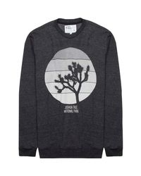 Parks Project Black Joshua Tree Bar Sun Crew Sweatshirt for men