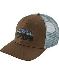 Patagonia Brown Fitz Roy Bear Trucker Hat for men