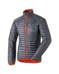 Dynafit Blue Tlt Primaloft Jacket for men