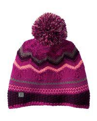 Smartwool Purple Pine Lake Chevron Hat