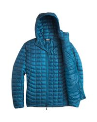 The North Face Blue Thermoball Hooded Insulated Jacket for men