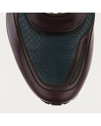Bally - Multicolor Ascar Men ́s Python Trainer In Dark Teal And Burgundy for Men - Lyst