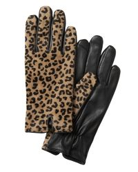 Banana Republic Multicolor Mixed Media Notched Glove