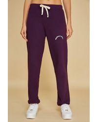 Warm Purple & Cozy Sweatpants