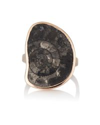 Dezso by Sara Beltran | Black Fossilized Ammonite Ring Size Na | Lyst