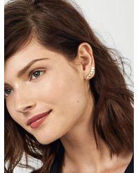 BaubleBar Metallic Celine Ear Crawlers