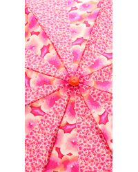 Marc By Marc Jacobs Multicolor Aki Flower Print Umbrella Knockout Pink Multi