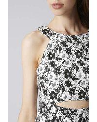 TOPSHOP Black Petite Mono Floral Print A-Line Dress